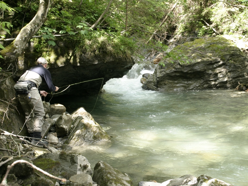 Fly-fishing in Sulzbach