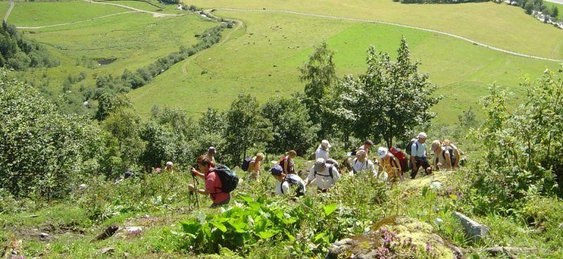 Hike to Walcheralm